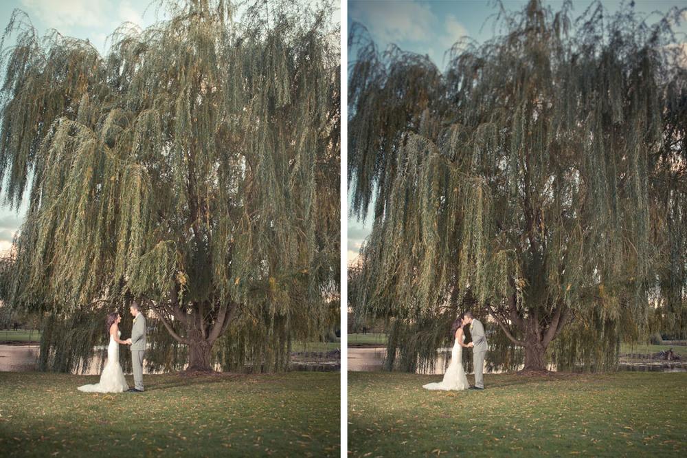 Cesario_Bride_groom_Willow_Tree.jpg