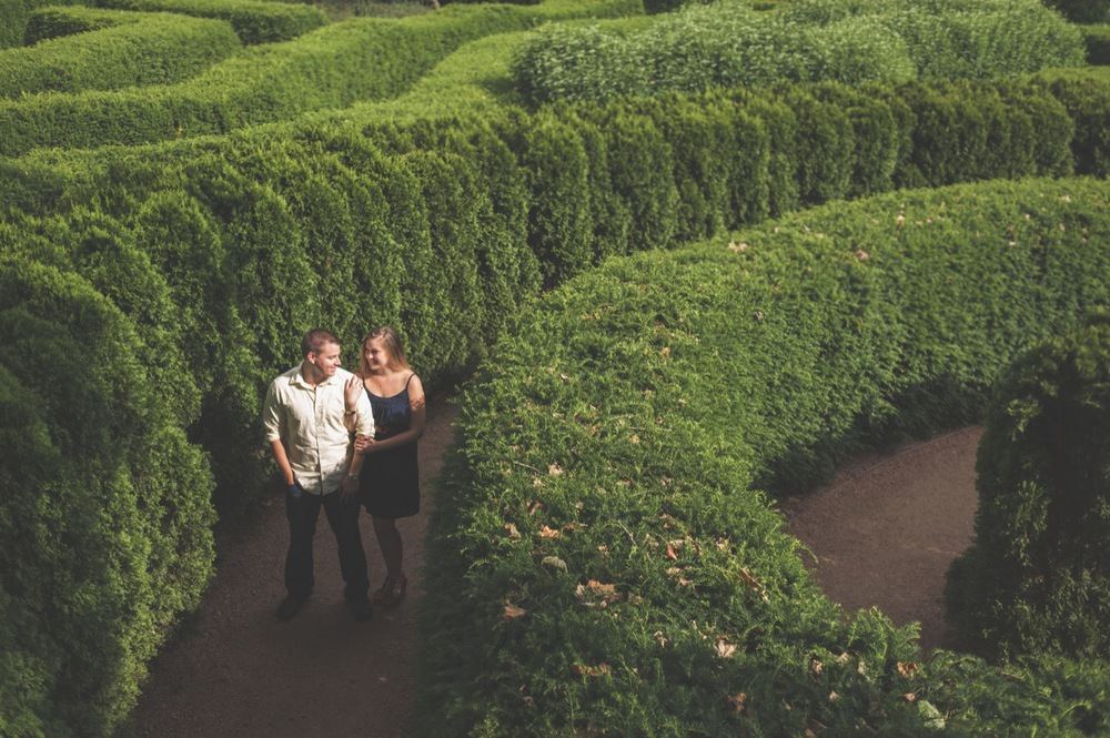 20130623165629_hedge_maze_engagement.jpg