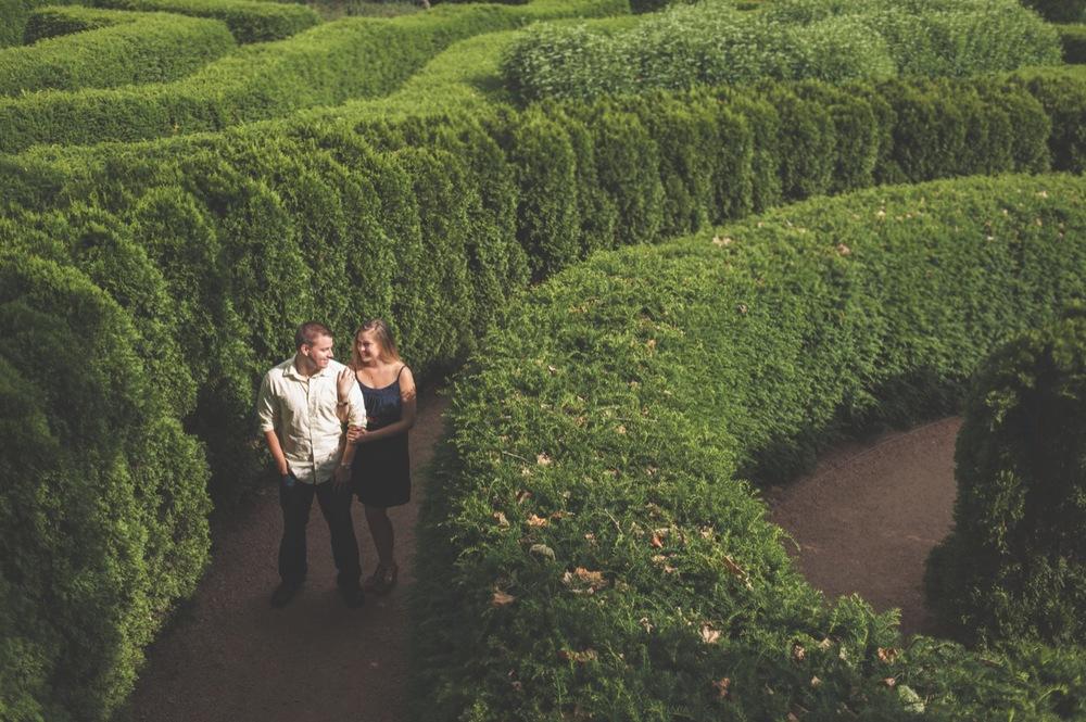 20130623165629_hedge_maze_engagement.jpg