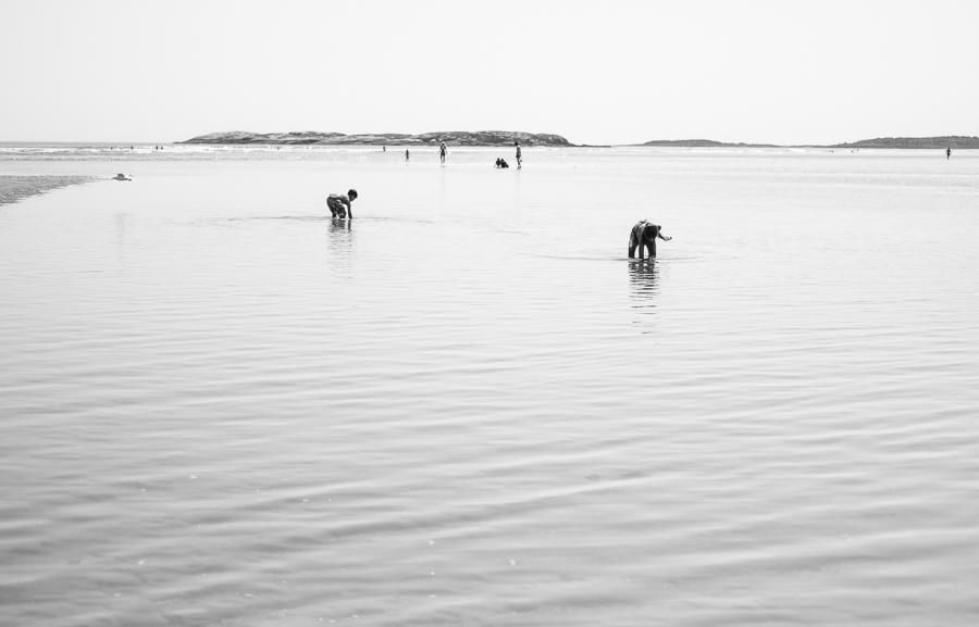 black and white daze in maine blog-82.jpg