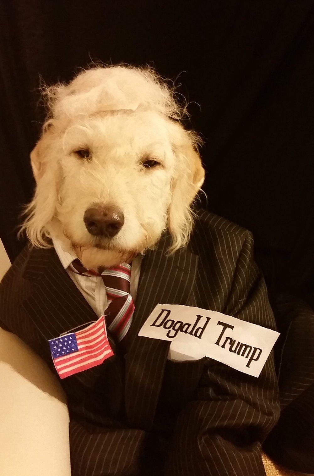 Margie-Dogald Trump.jpg