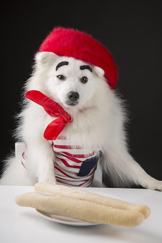 Monsieur Toshi.jpg