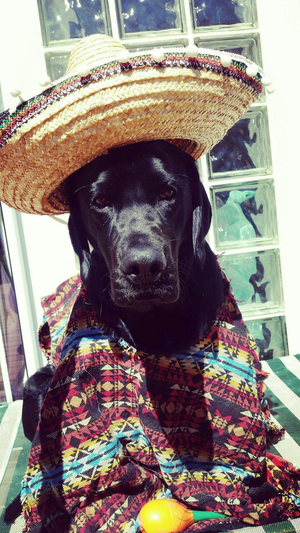 Leo - Mexican.jpg