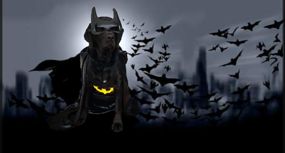Leo Batman.png