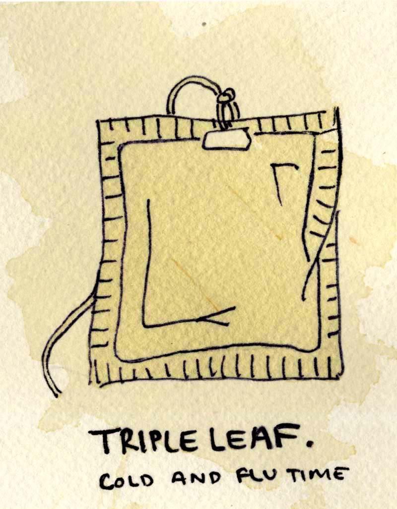 tripleleafcoldexp.jpg
