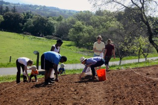 sowing seed at the Bishop's Ranch