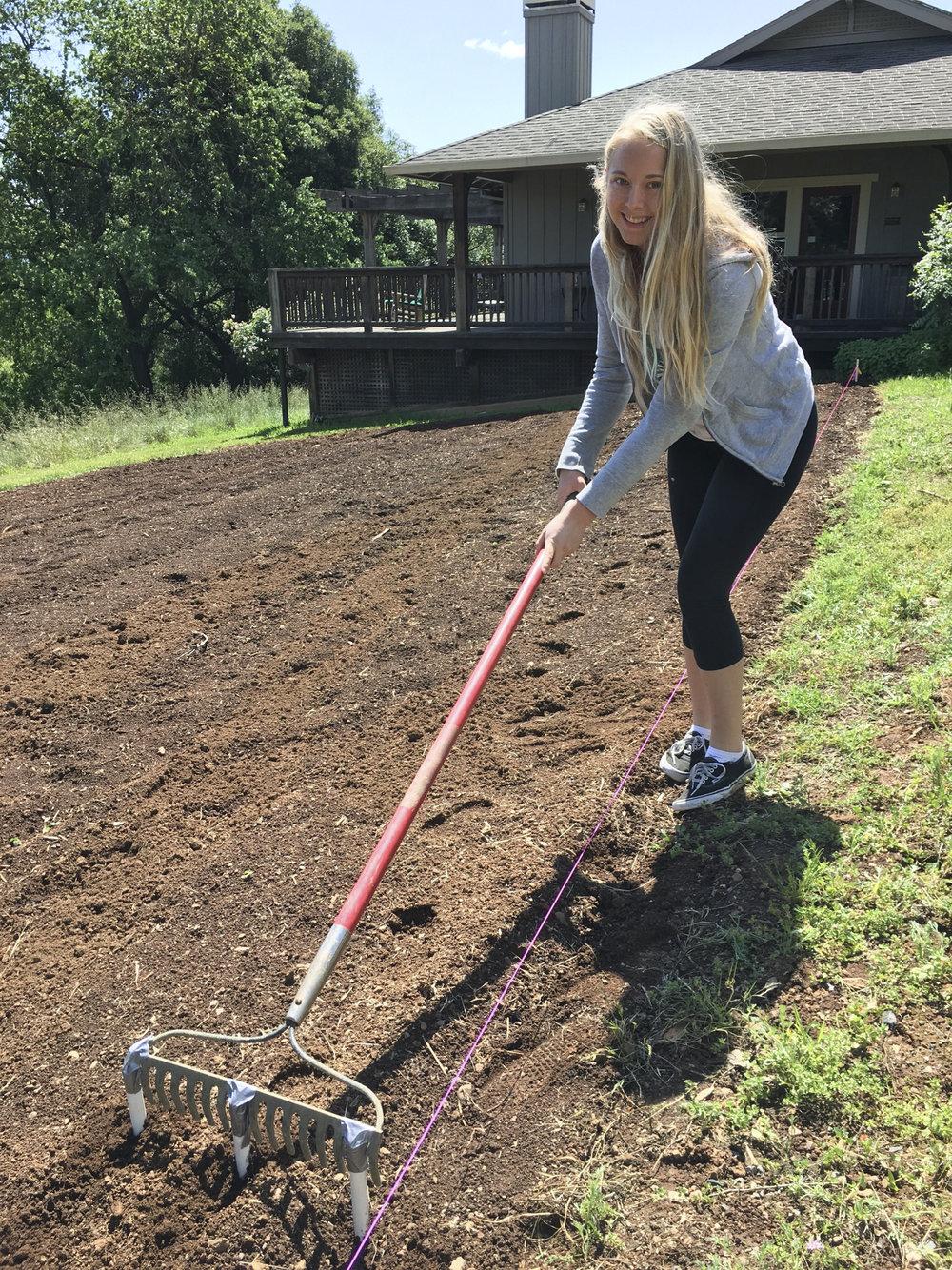 Planting Day 7.jpg