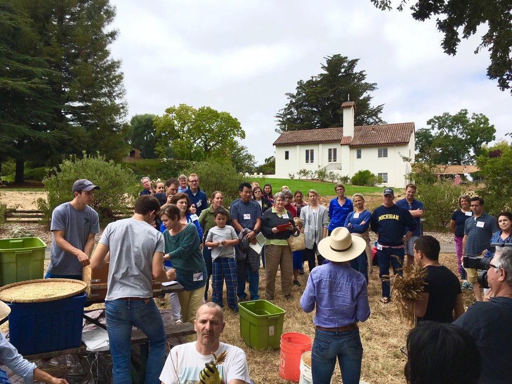Community Harvest day 2016 at the Bishop's Ranch, Healdsburg California