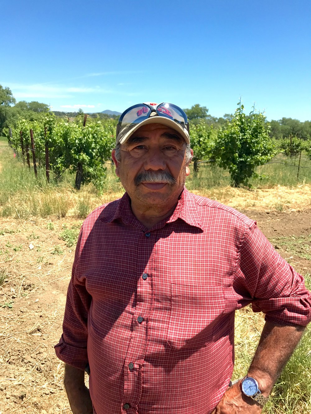 One of honoré's farmers, Jesus, from preston farm & winery, healdsburg, california