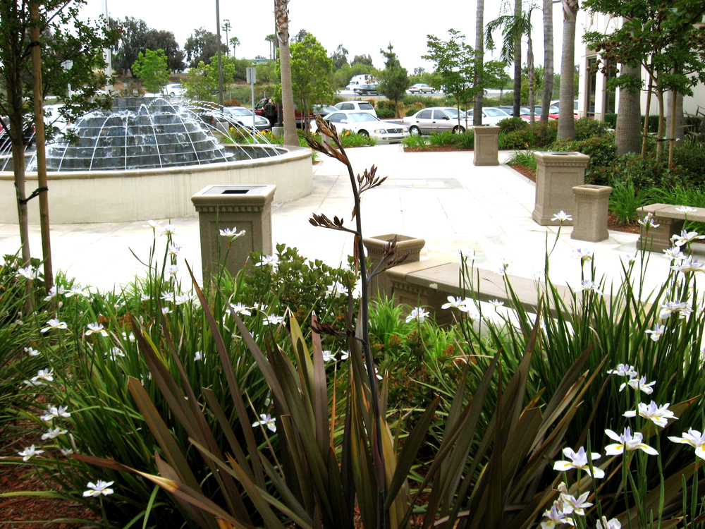 etco fountain-landscape.jpg