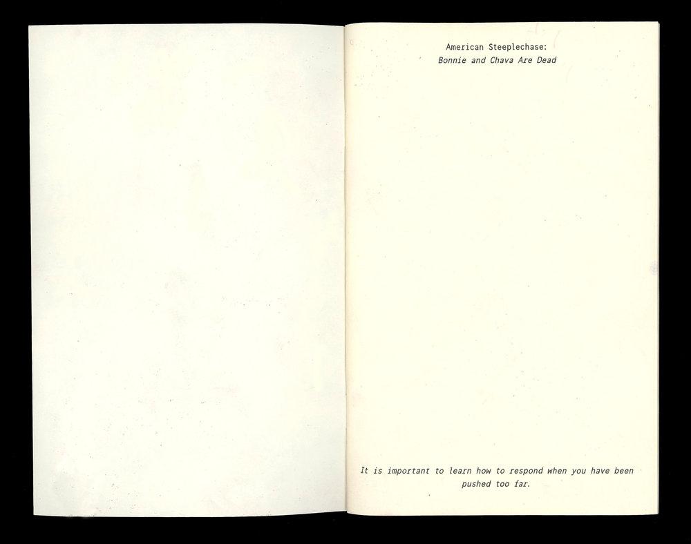finalbook002 copy.jpg