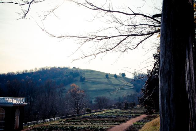 Monticello-1