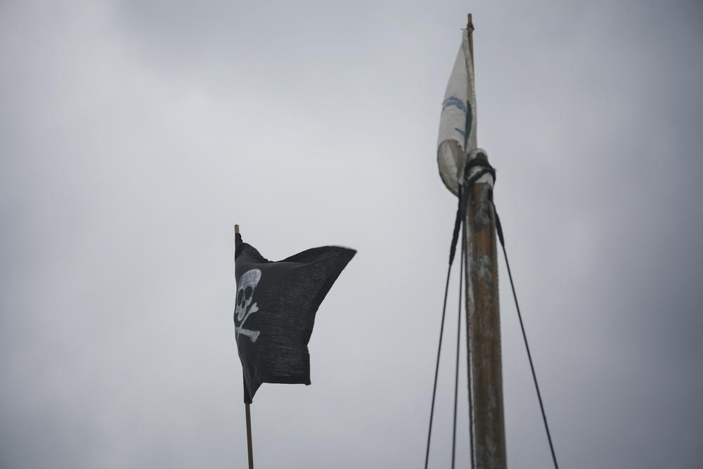 alidover_swallows_flags_web.jpg