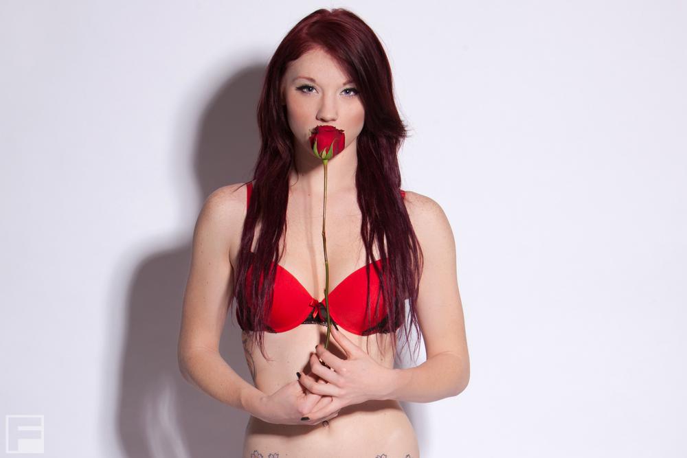 KM_rose-1.jpg