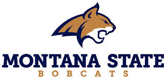 Montana State University BSN Nursing School