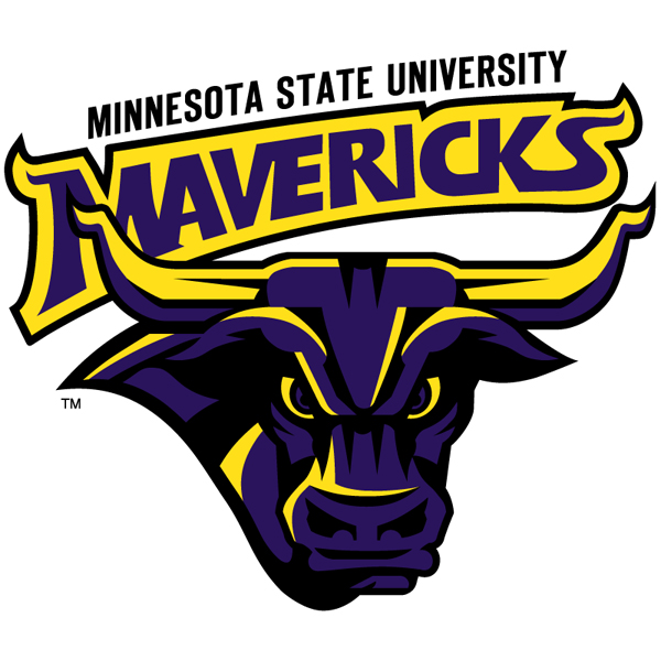 Minnesota State University RN to BSN nursing school