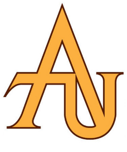 Adelphi University BSN nursing program