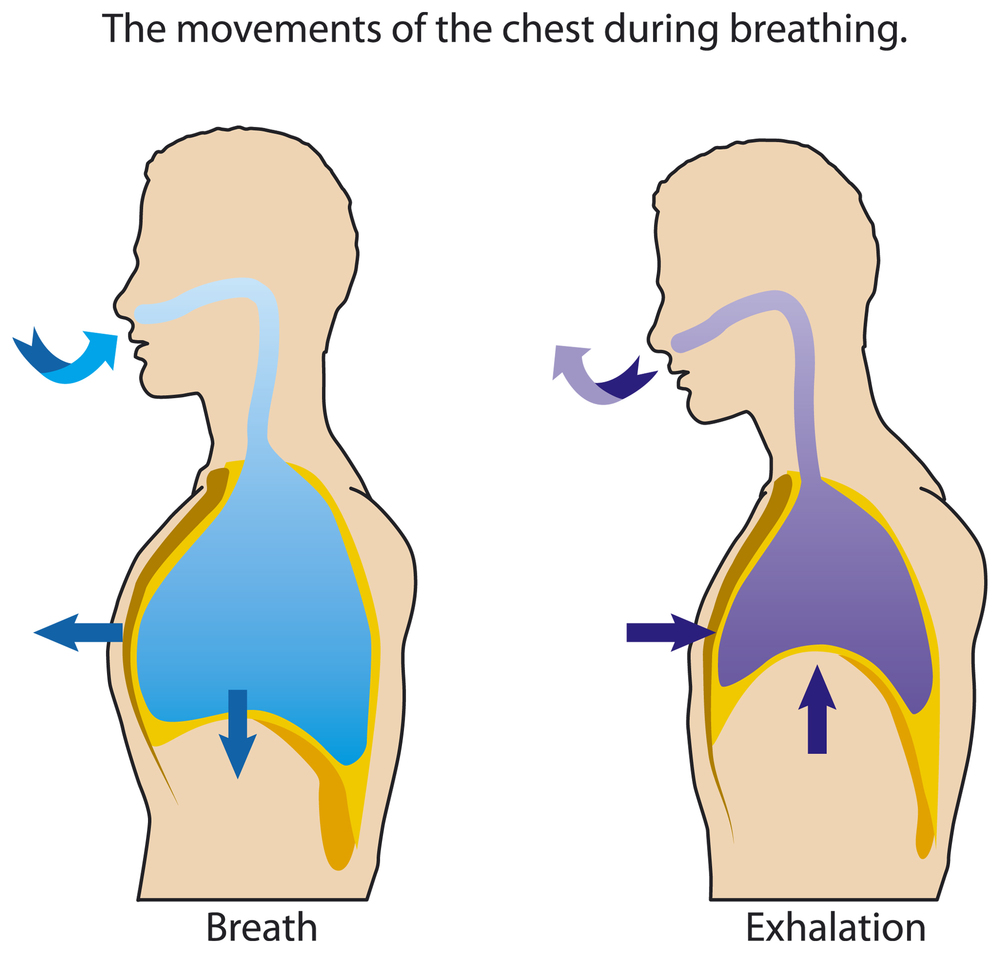 How to Do Abdominal Breathing