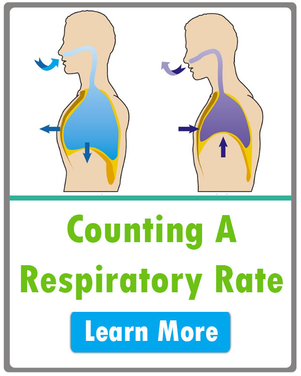 how to count respiratory rate nursing