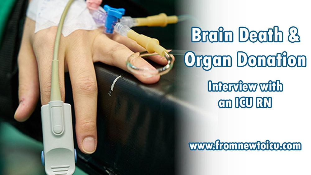 Brain Death and Organ Donation.jpg