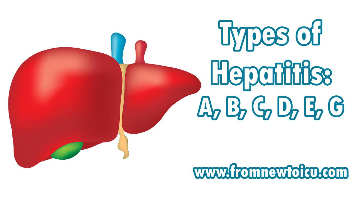 Hepatitis C - Wikiwand