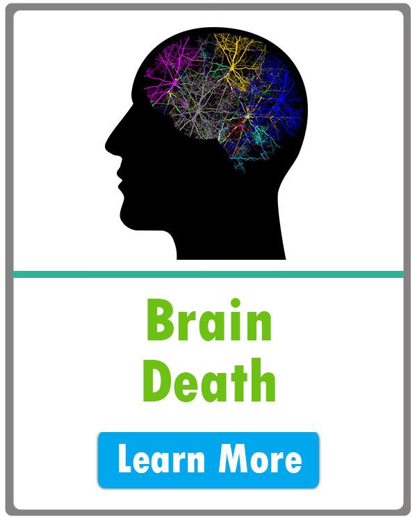 Brain Death.jpg