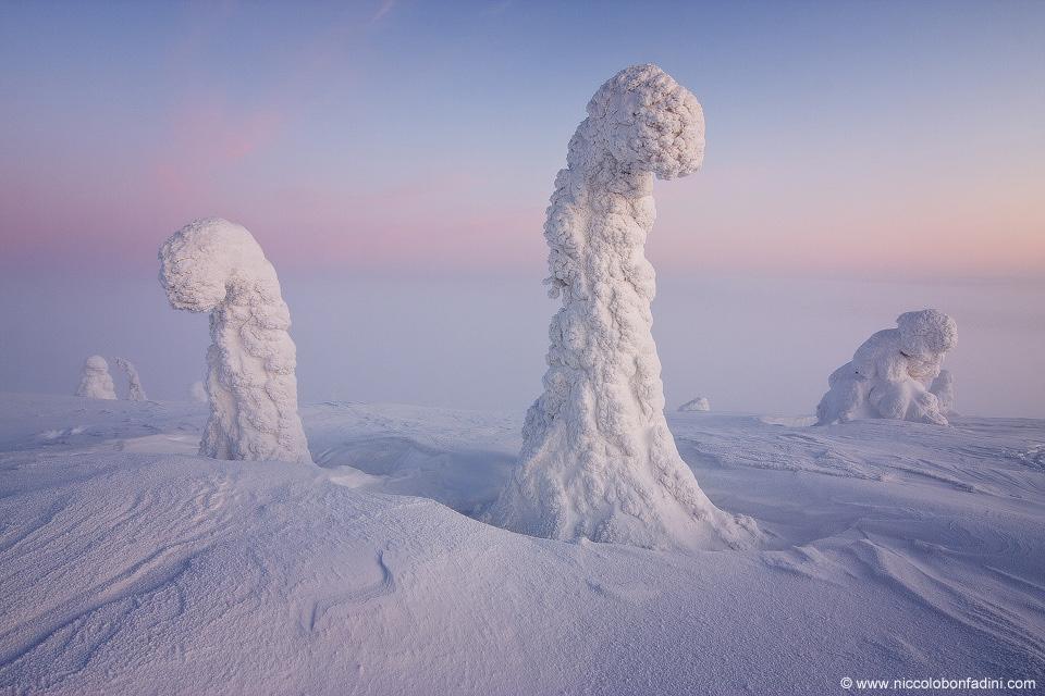 Finnish Lappand.jpg