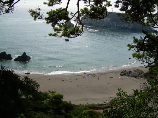 Read ahead to find out why Brookings, Oregon is the place to be tomorrow. Photo by Kashberry, Aug 2008 (Trip Advisor)