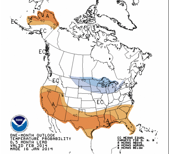 February Temperature outlook ( Blue: Below normal, Brown: Above normal, White: Equal chance