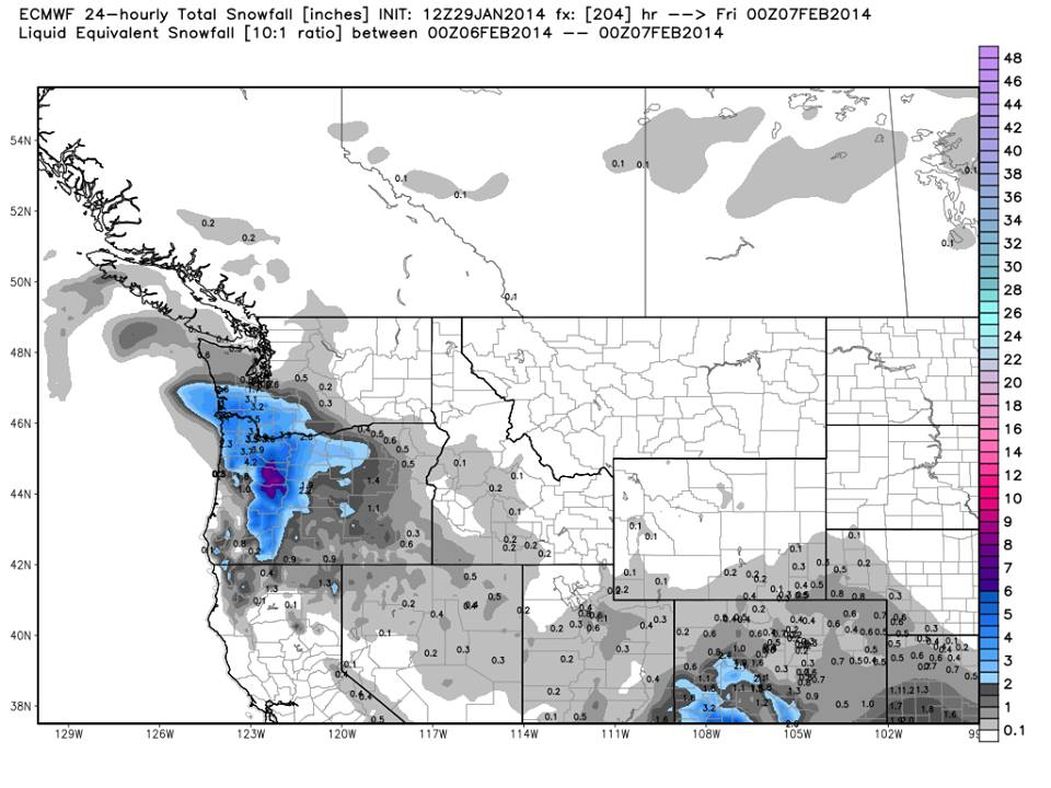 Here's the decoy, showing the Portland area receiving several inches of fictional snow 204 hours out