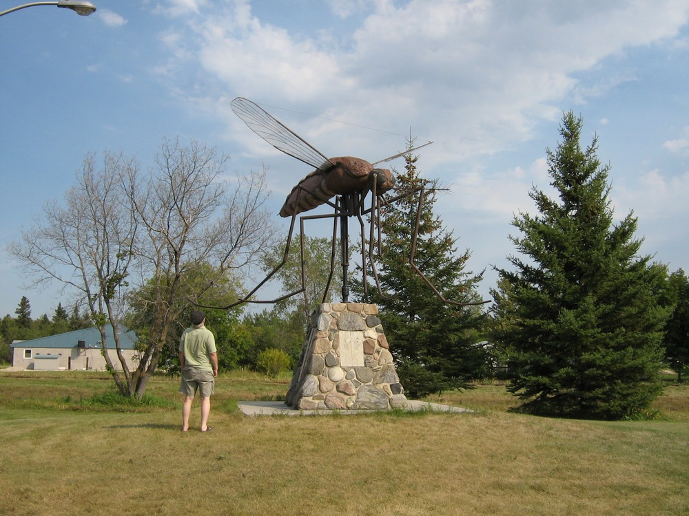 Yes, this is real. A realistically sized Manitoban mosquito, on display in Komarno, Manitoba.  Source.