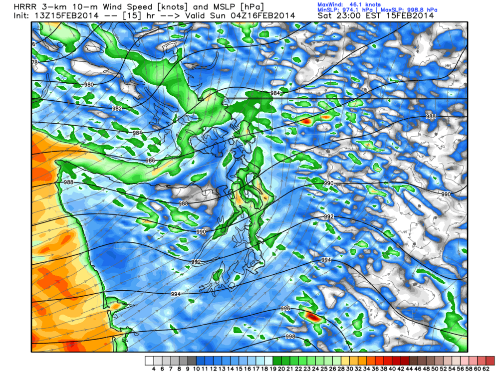 Valid for 8PM tonight showing sustained wind close to 30 knots around Tsawwassen.