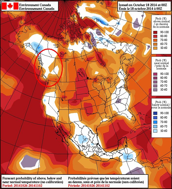 Latest NAEF guidance for the week of Halloween, trending towards climatology for BC