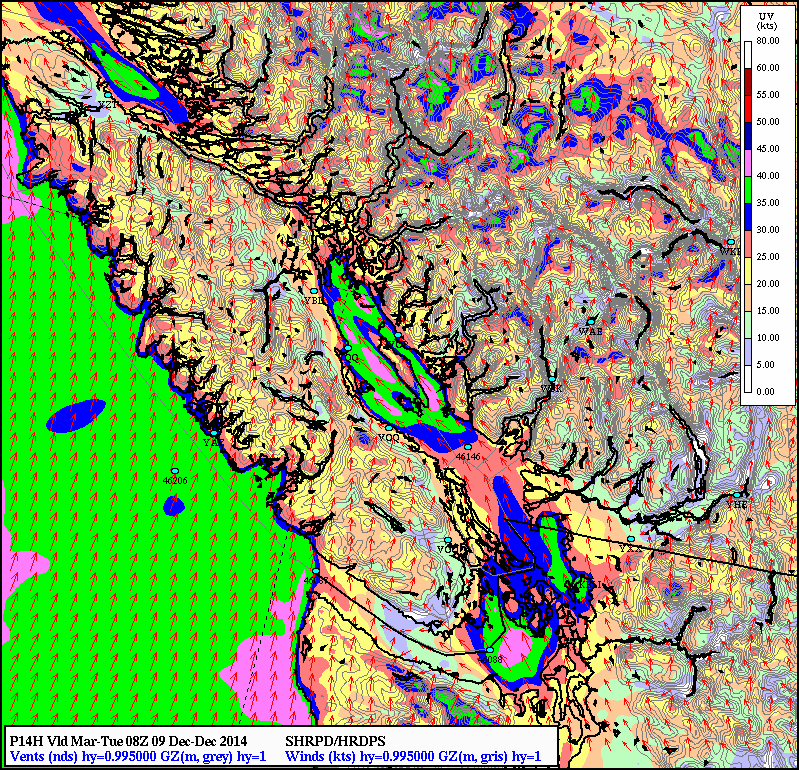 Visualize this as a snapshot of the winds at midnight local time (08Z). Notice the pinks in Northern Portions of Georgia Strait and the very strong winds SE of Victoria. 40 knots= 75 km/hr with gusts likely to 90 km/hr