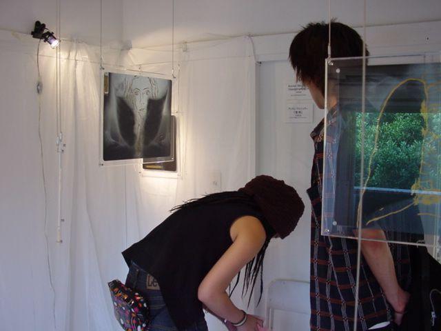 Weschler Andrée exhibition.jpg