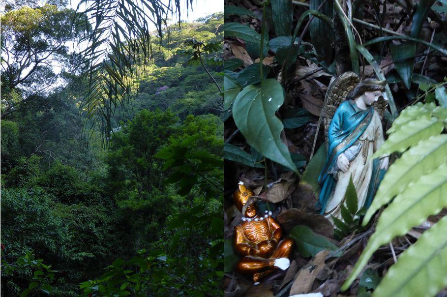 Dans la forêt de Tijuca, offrandes aux dieux du candomblé, une religion menacée par l'emprise croissante des évangéliques qui n'hésitent pas à détruire ces marques de dévotion.