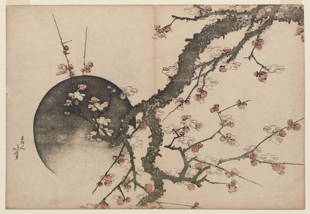 Hokusai. Fleurs de prunier et lune, Album Mont Fuji au printemps (Haru no Fuji) . Museum of Fine Arts, Boston.