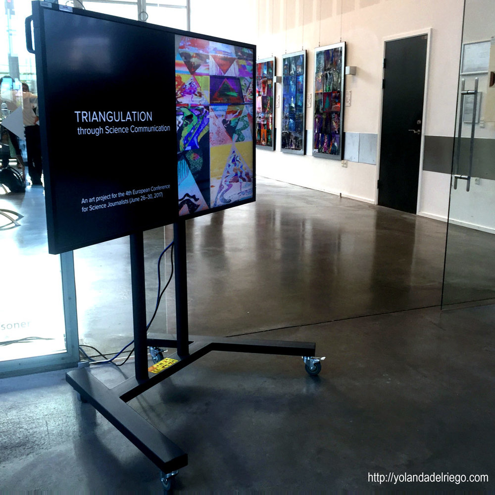 Installation view of the art project