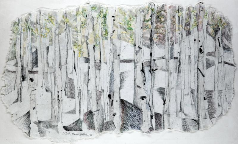 Birch Tree   (1980)