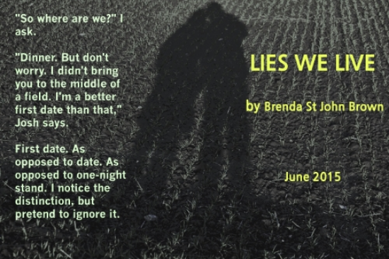 Lies We Live_teaser 3.jpg