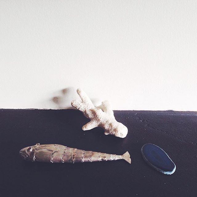 Little sea collection on the mantle piece. I like it when random objects come together to form little scenes.