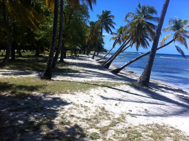 Wonderful beach on Mustique