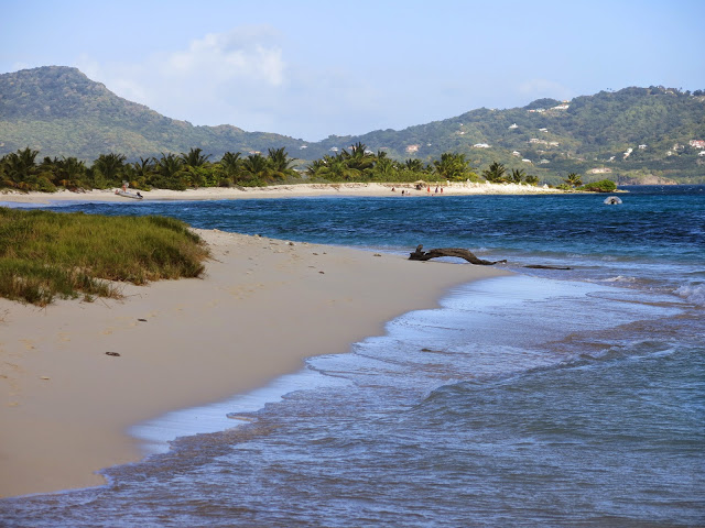 sandy island carriacou