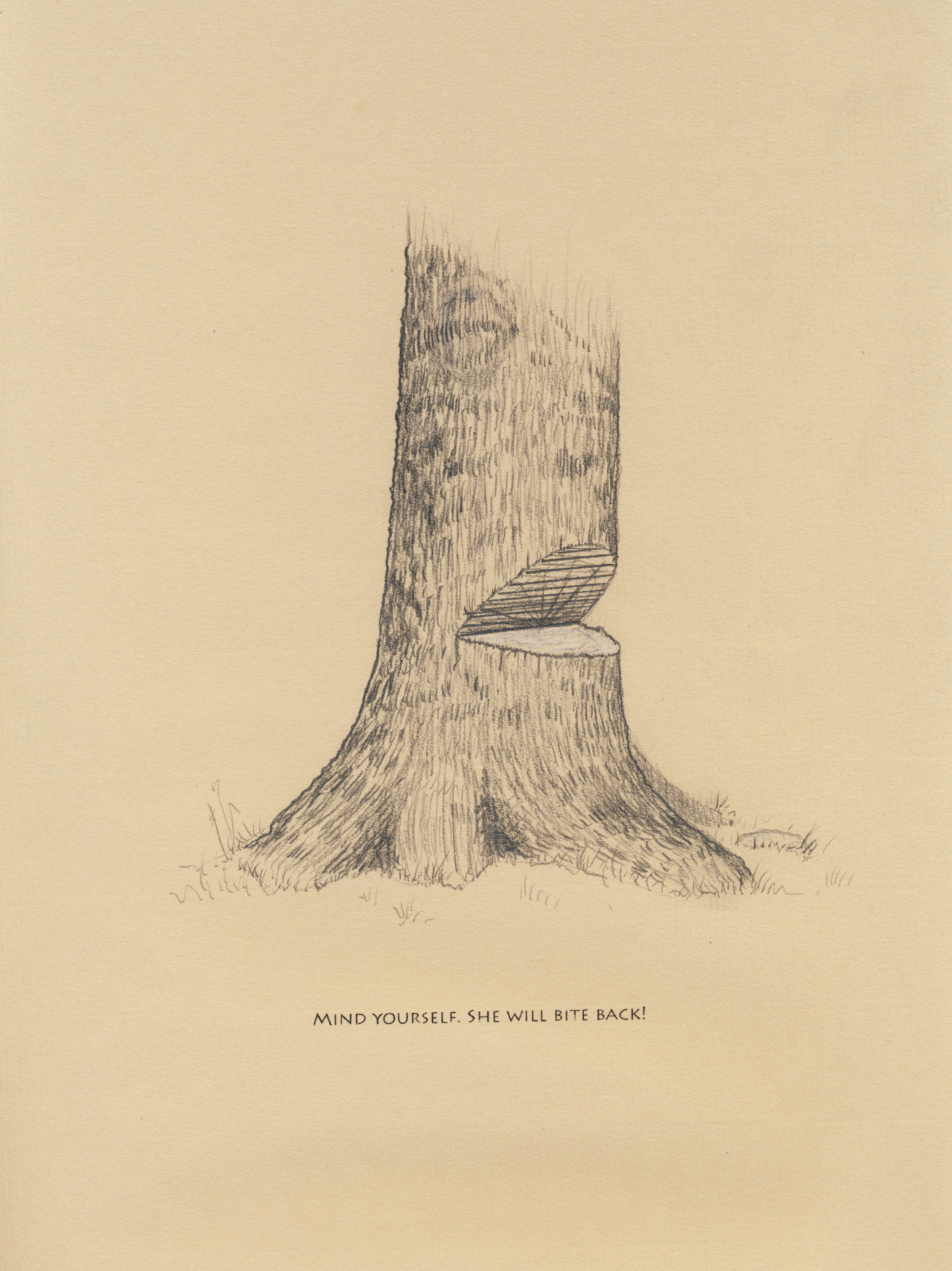 """She Will Bite Back""    Graphite, whiite pencil, carbon transfer   8.5x11""     Bibliography    Wojtkowski, Paul A.  Undoing the Damage: Silviculture for Ecologists and Environmental Scientists.  Enfield, New Hampshire: Science Publishers, 2006."