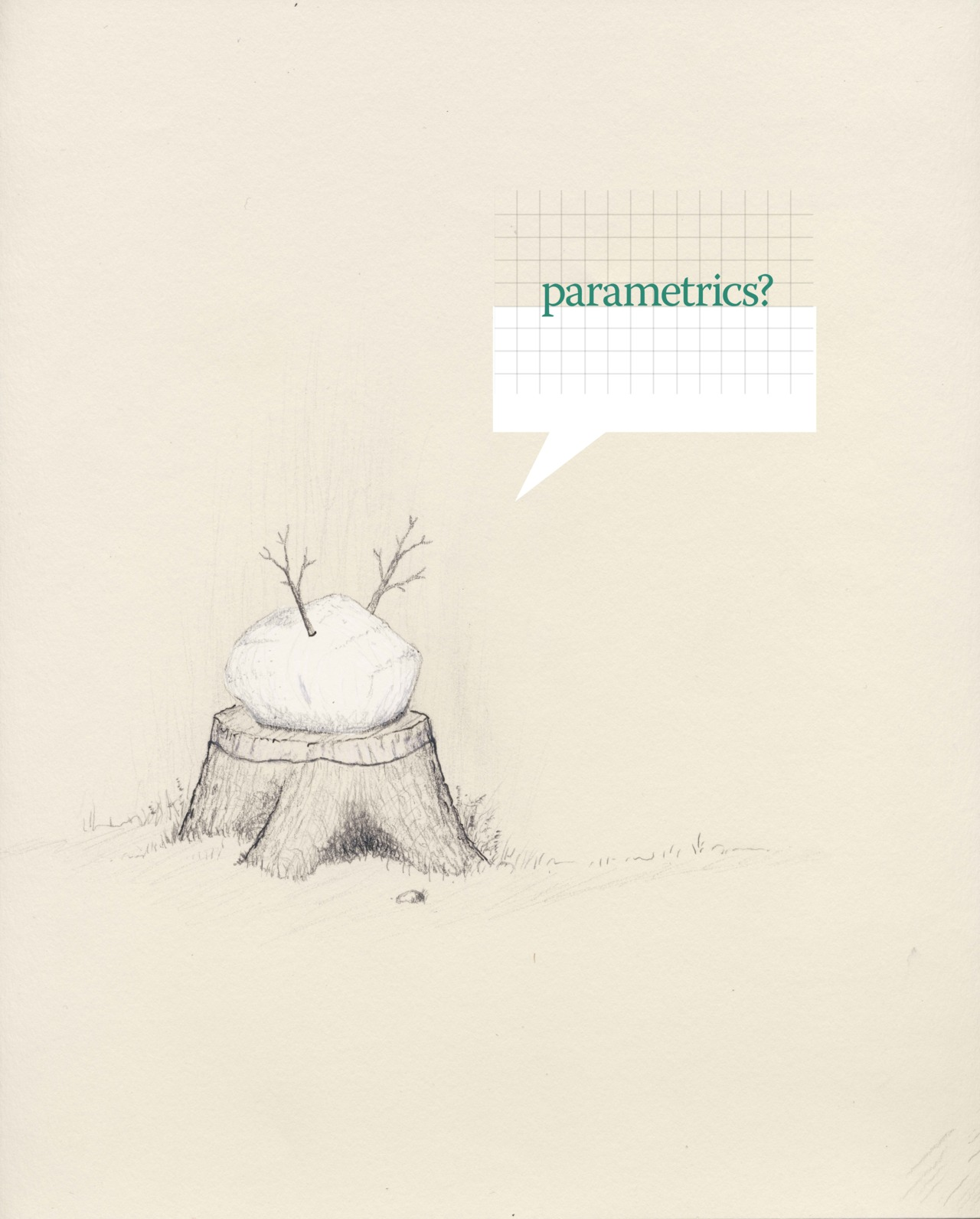 "Parametrics?      8.5x11""   Graphite, ink, white pencil, photoshop   Spring 2012"