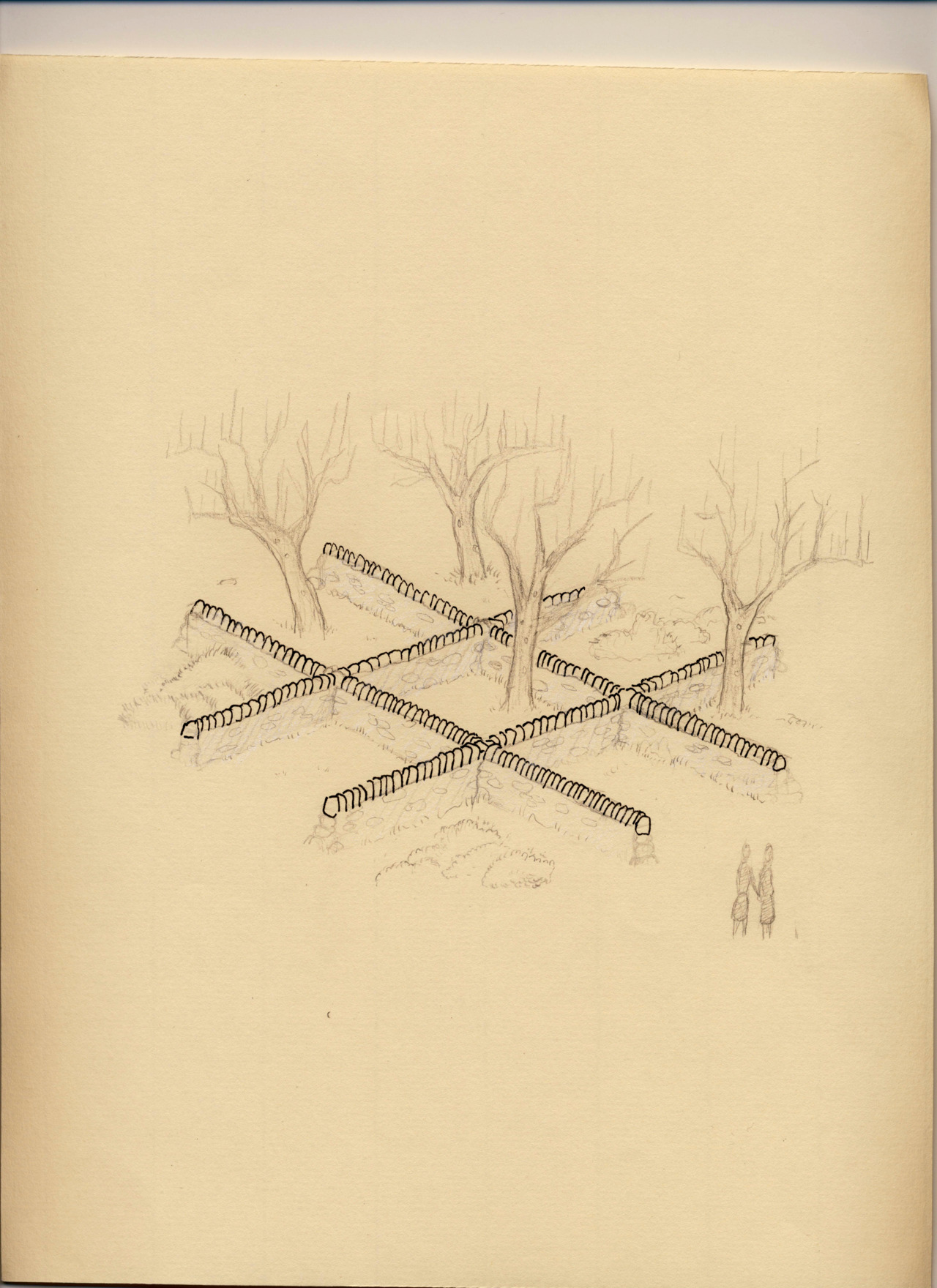 Successional Tic Tack Toe   Ink, graphite, and white colored pencil Proposal for successional Tic Tac Toe board installation in Harmony, Maine   Left to their own successional devices, which species would win a game of successional tick tack toe in an abandoned agricultural field over the course of twenty years?  Juniper virginiana, Rosa multiflora , Pinus strobus, Betula  lenta , etc.  Place your bets.