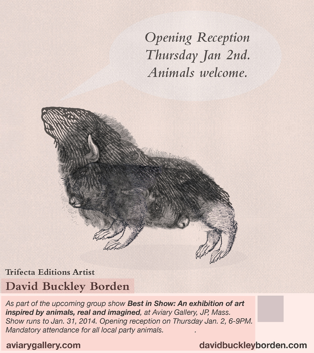 DBB-Aviary-ANIMALS-flyer.jpg