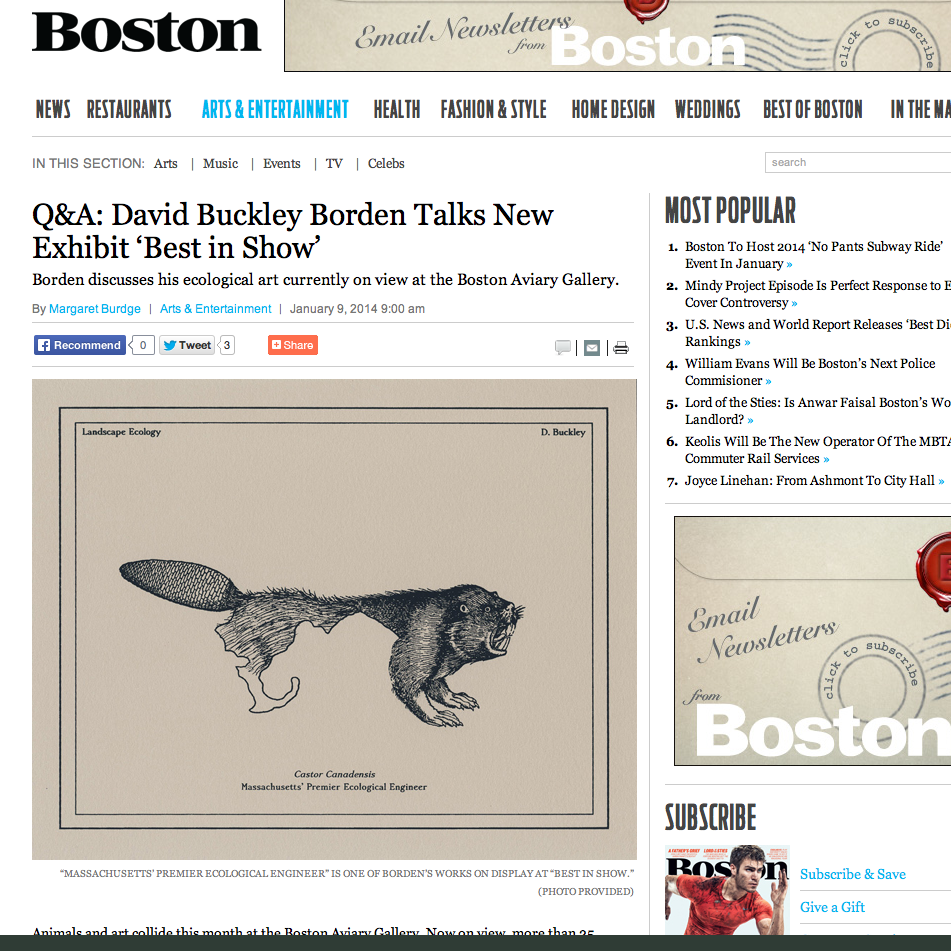 Boston Magazine DBB screen shot.png