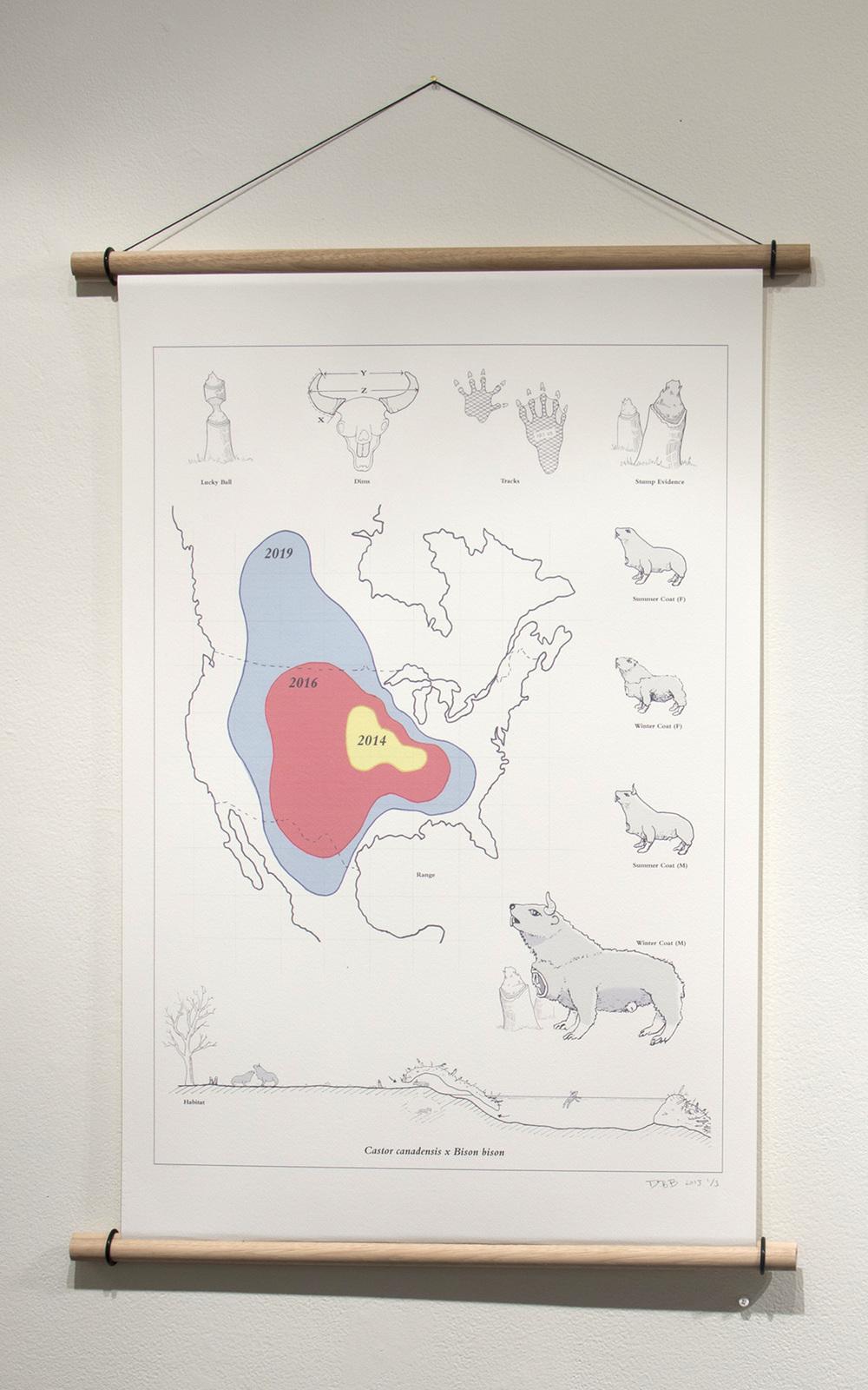 """Castor Canadensis X Bison Bison, digital print, 18 X 24"""" December, 2013."""