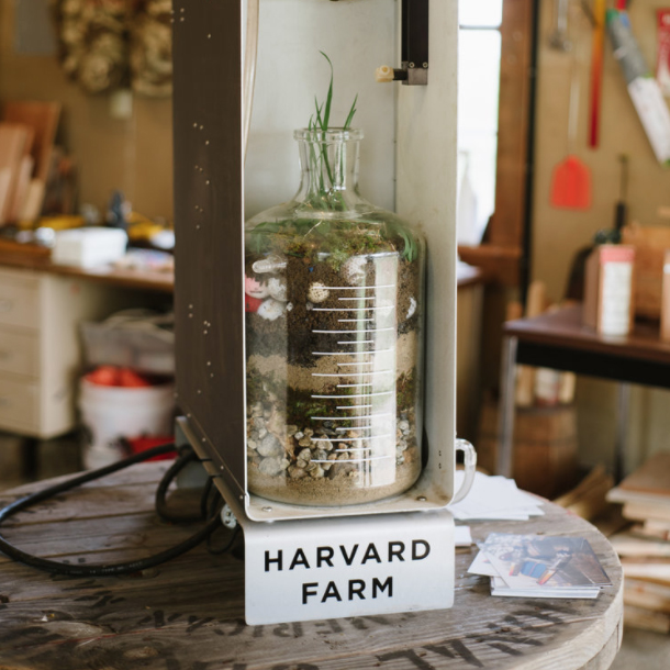 Harvard Farm, collaboration with Benjamin Carlson, photography cortusey of Tell New England